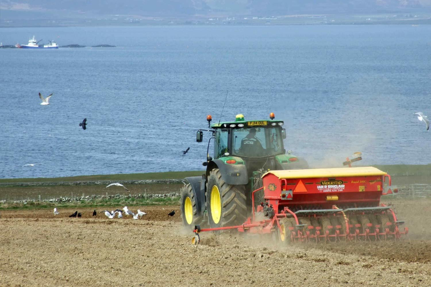sowing bere barley in new ground at Weyland